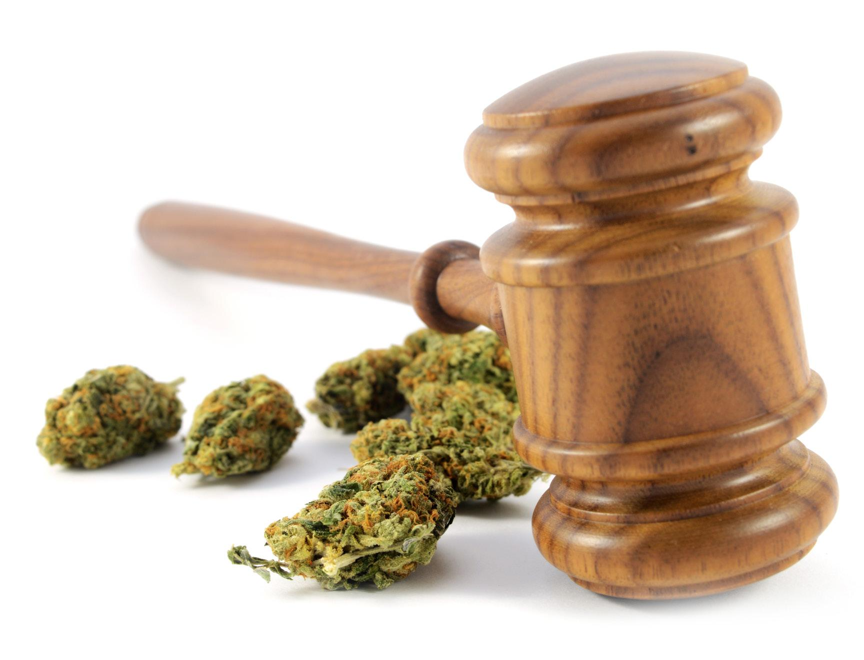 Page 10 of Cannabis Addresses Its Social Equity Issue