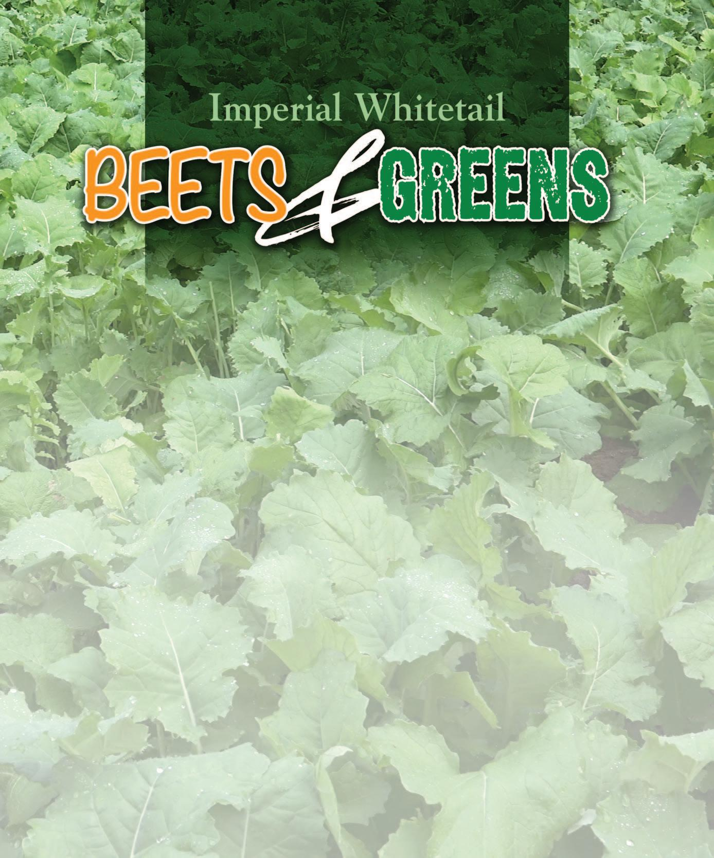 Page 18 of Imperial Whitetail Beets & Greens Offer Attraction, Attraction