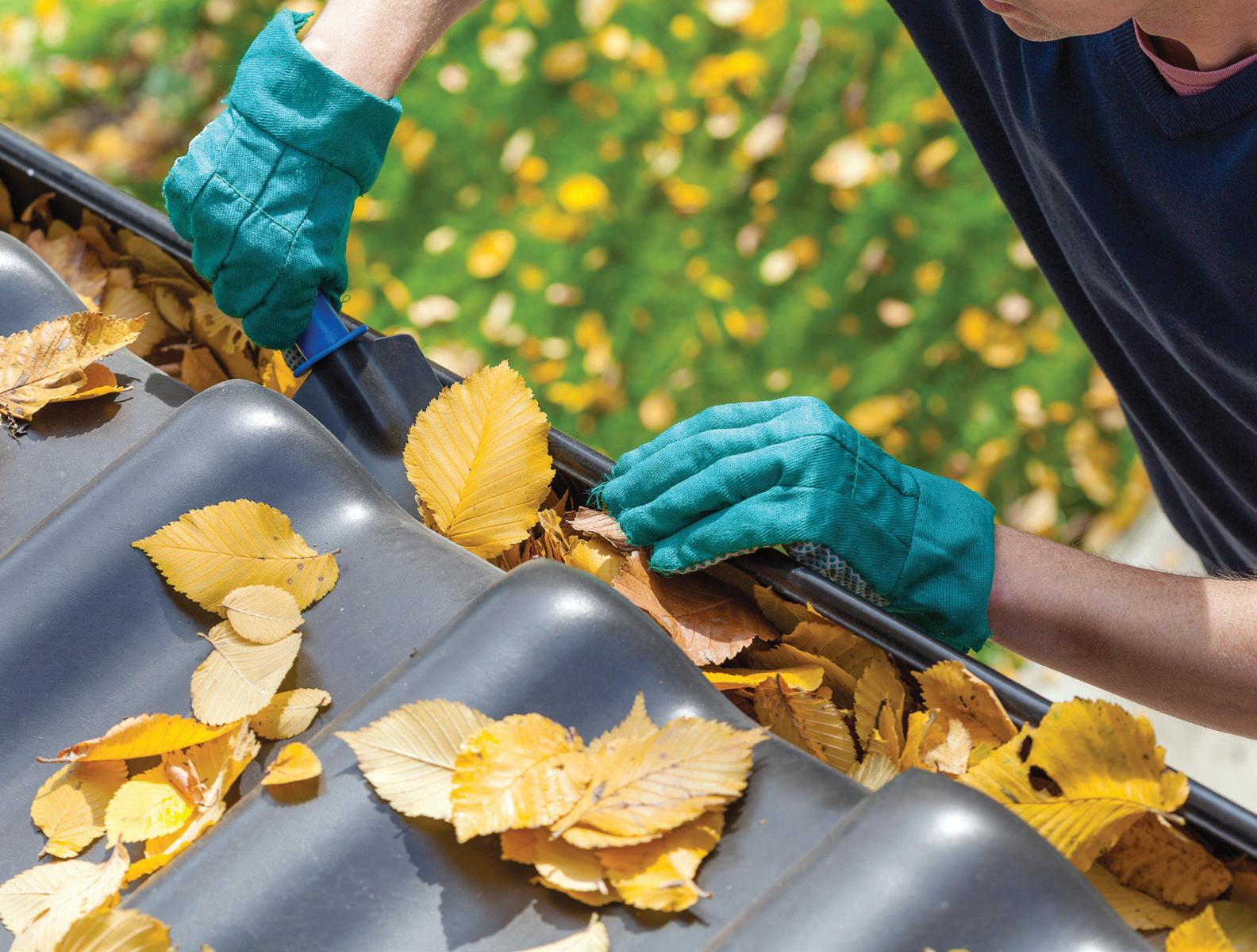 Page 20 of Prepare Gutters For Winter