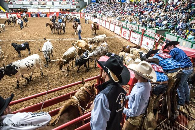 Page 4 of Texas Cowboy Hall of Fame Ranch Rodeo at Cowtown Coliseum