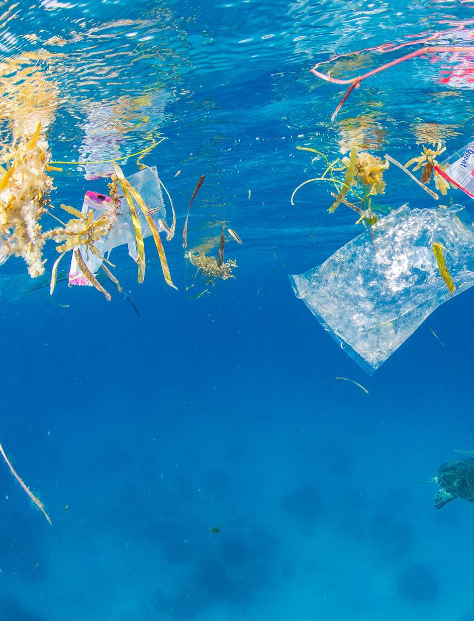 Page 36 of More than 250 million tons of plastic are estimated to make its way into our oceans by 2025, painting a worrying image of the future.