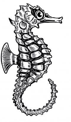 Page 48 of TATTOOS Curiositats científiques sobre els tatuatges