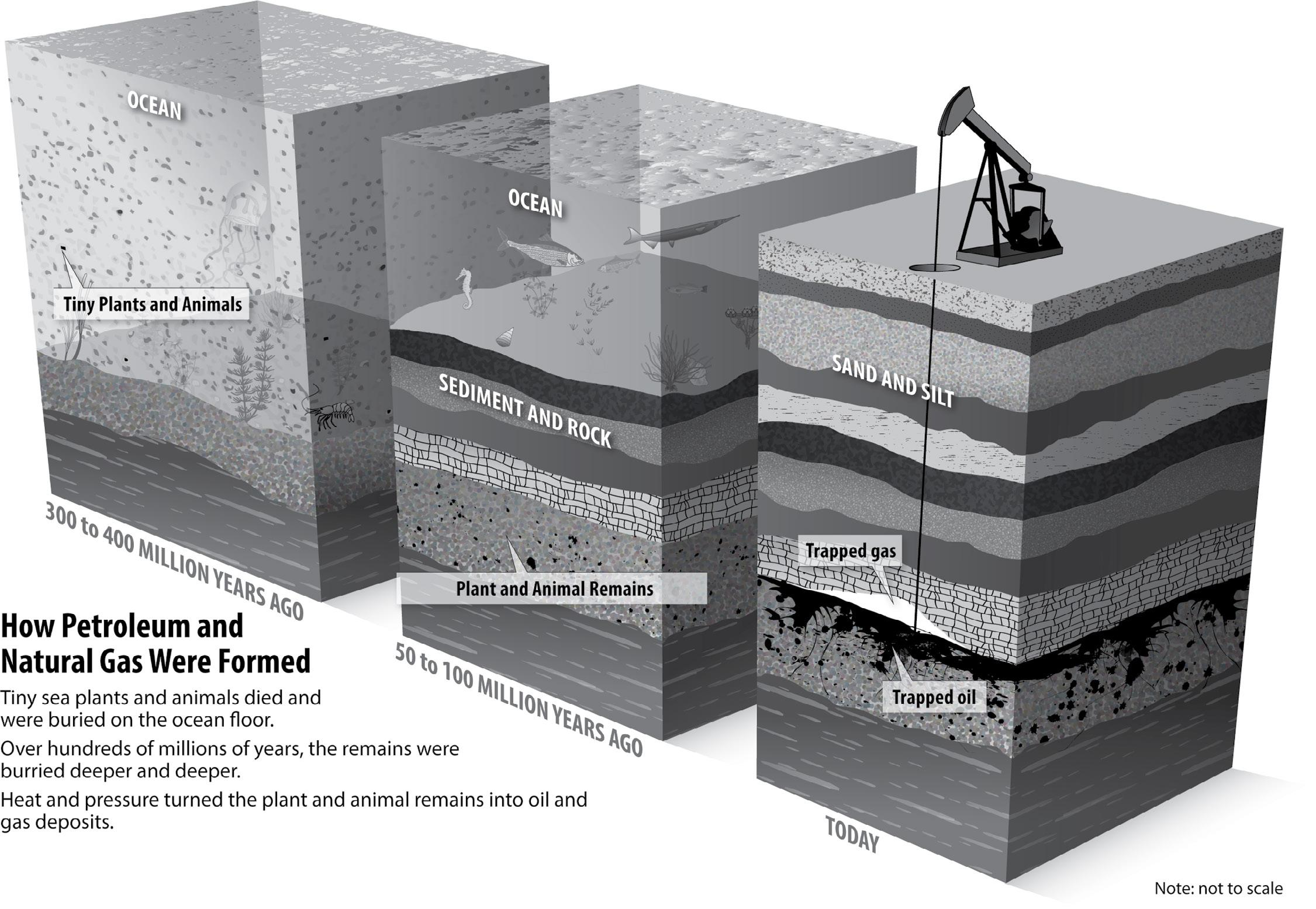 Page 46 of Petroleum