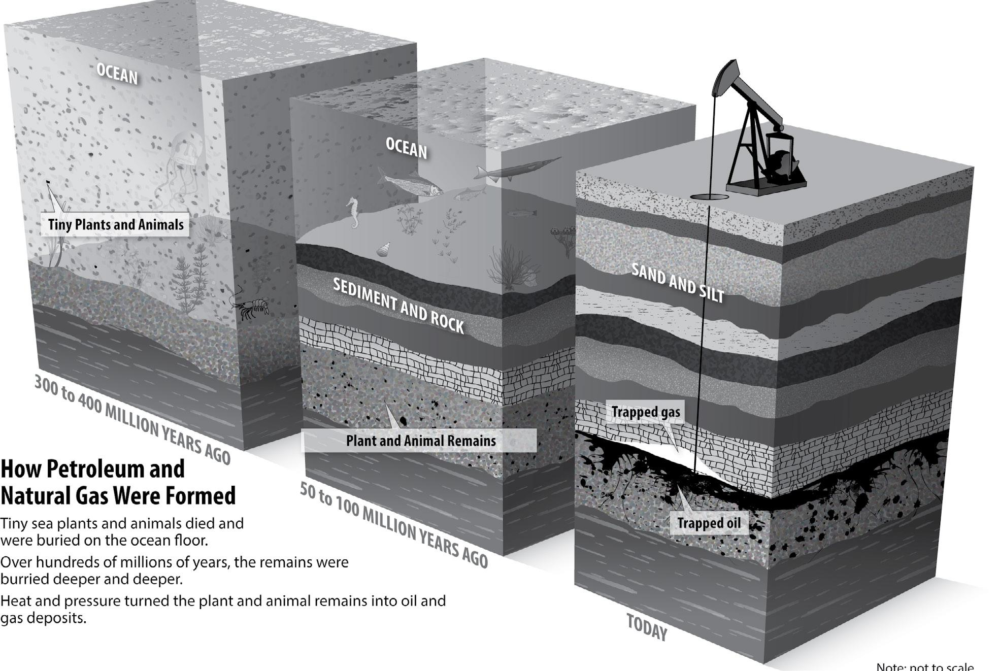 Page 30 of Petroleum