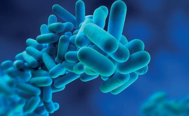 Page 52 of Eliminating Legionella fears with smart technology