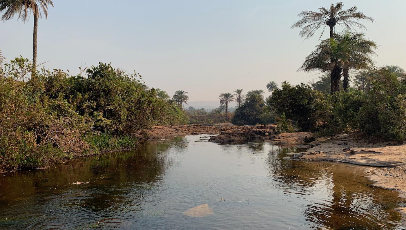 Page 64 of Za rybami do Afriky: WAC Guinea 2020 (2