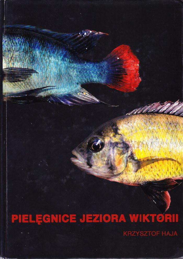 Page 52 of Pielęgnice Jeziora Wiktorii