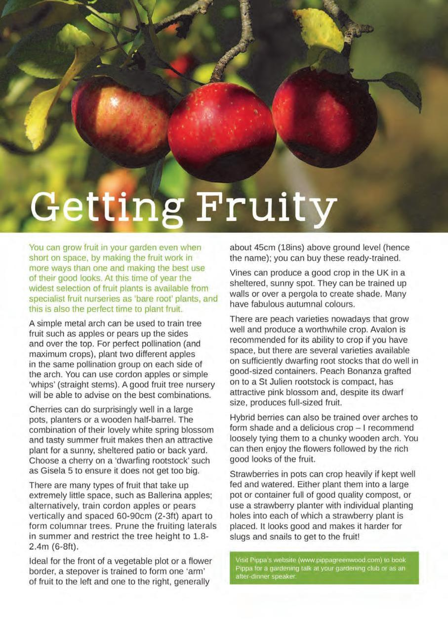 Page 30 of Garden Feature: Getting Fruity
