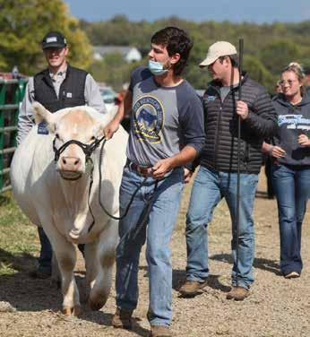 Page 40 of Junior Cattlemen Host Fall Classic