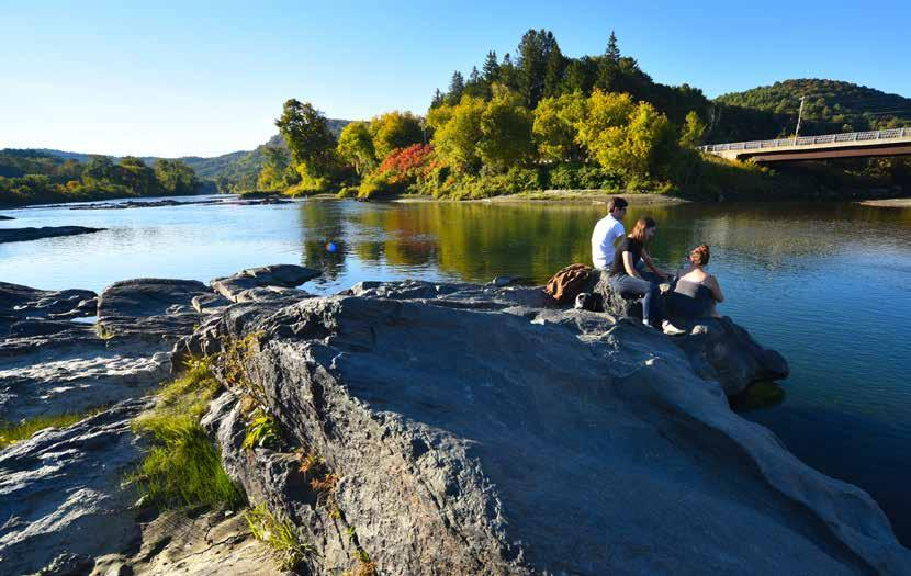 Page 7 of Clinic Co-Pilots Legislation to Protect Vermont's Surface Waters