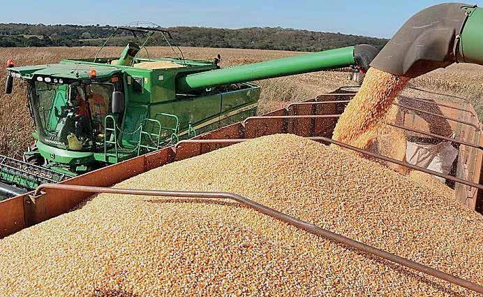Page 13 of Investimento em etanol de milho segue firme