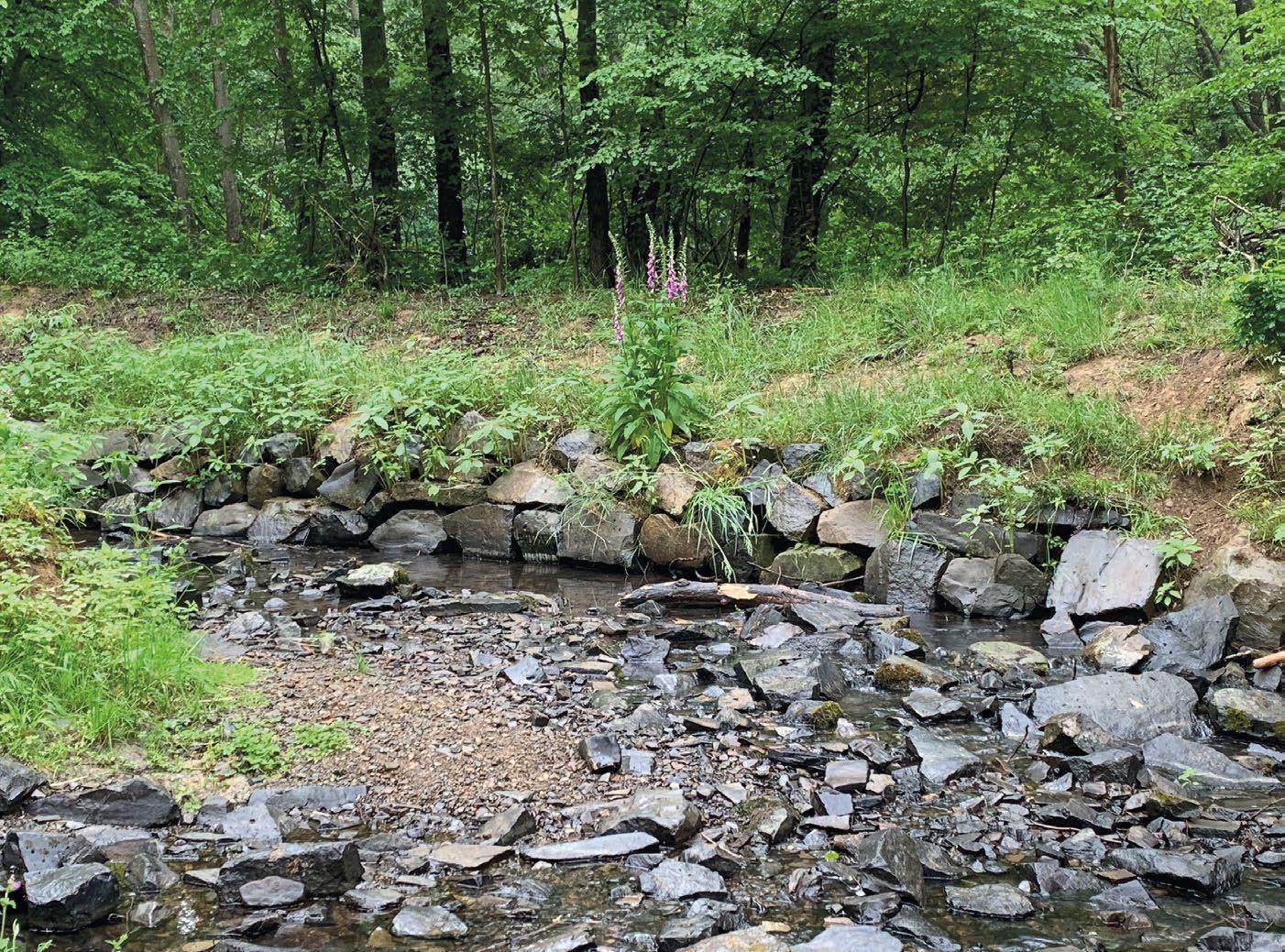Page 8 of tourentipp Dreitälerweg in der naturregion Sieg