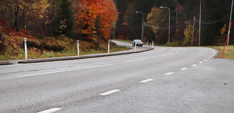 Page 48 of Bättre vägmarkeringar skulle rädda många liv