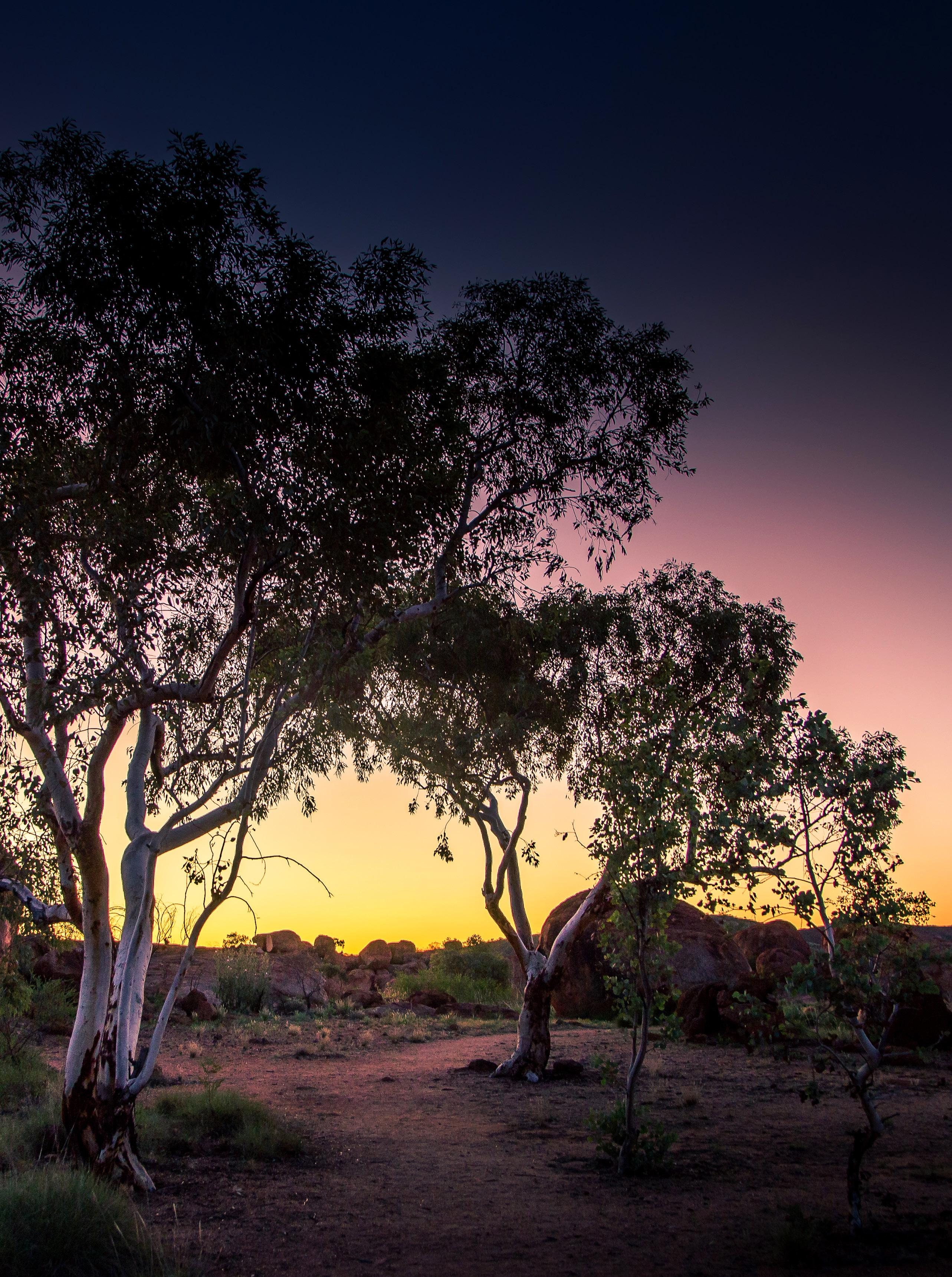 Page 12 of UNDERRATED TRAVEL A visit to Tennant Creek