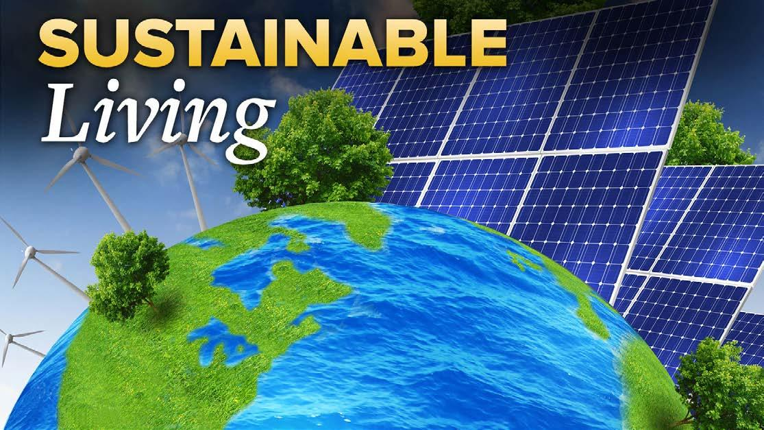 Page 14 of Sustainable Living - The Holidays