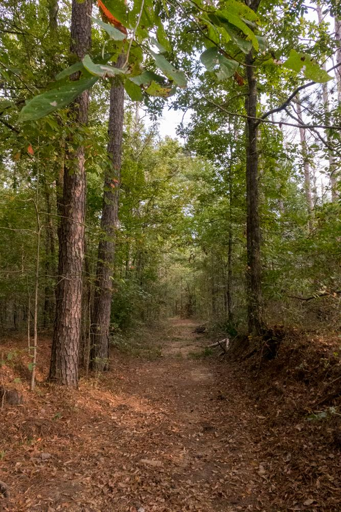 Page 30 of Exploring On and Off the Natchez Trace