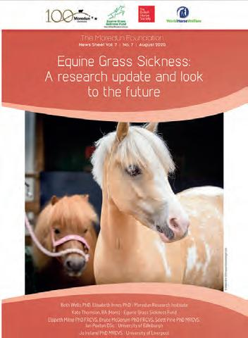 Page 8 of Equine Grass Sickness – Past, Present and Future