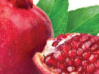 Page 9 of Now is the perfect time to become a member of the Pomegranate Society!