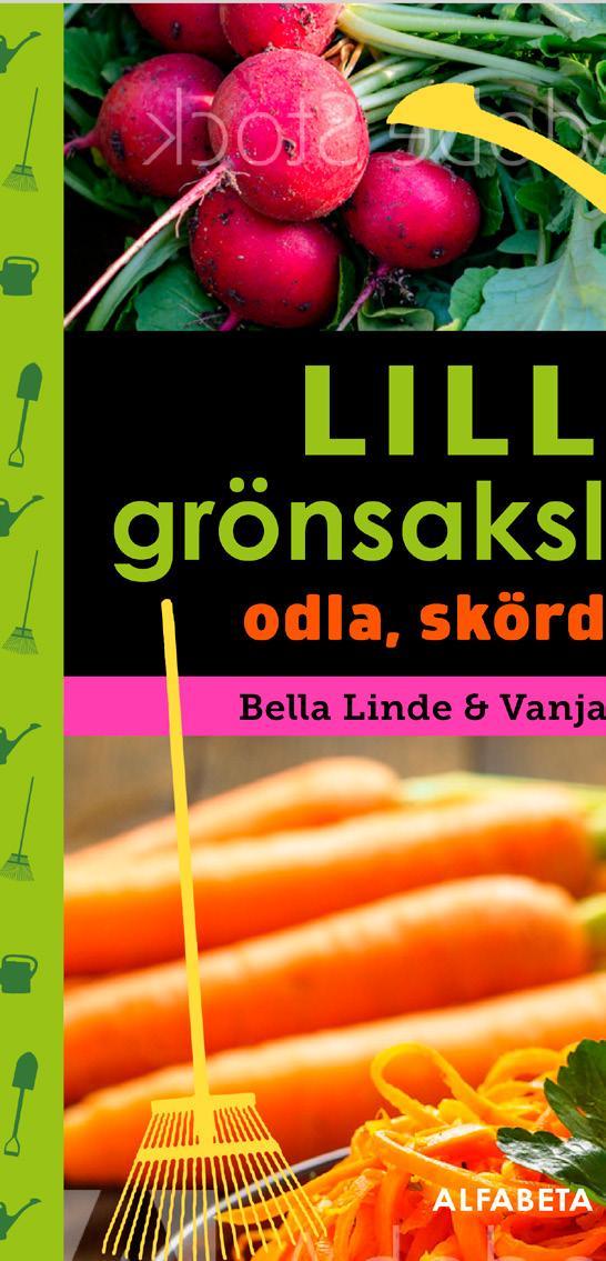 Page 16 of Lilla grönsakslandet Odla, skörda, äta Bella Linde/Vanja Sandgren