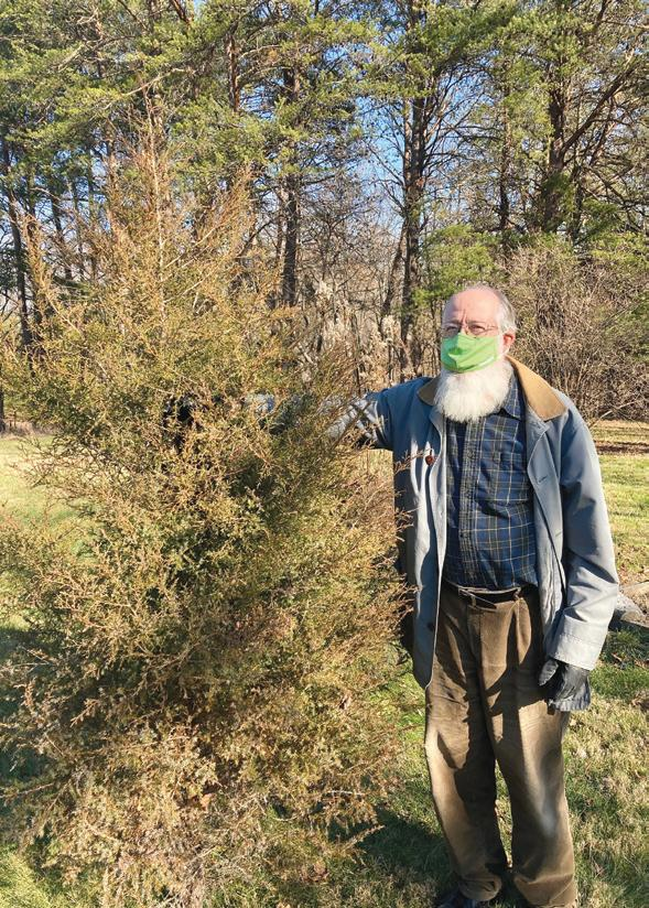 Page 44 of FIELD NOTES: Our Red Cedar