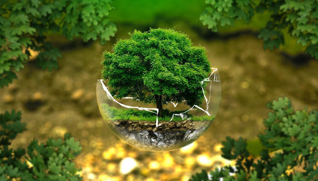 Page 10 of Sose csökkent egy év alatt ennyit a szén-dioxid-kibocsátás, mint az idén