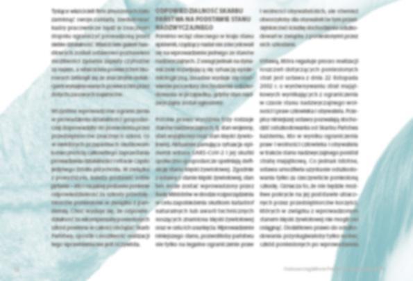 Page 12 of Kto zapłaci przedsiębiorcom za pandemię?