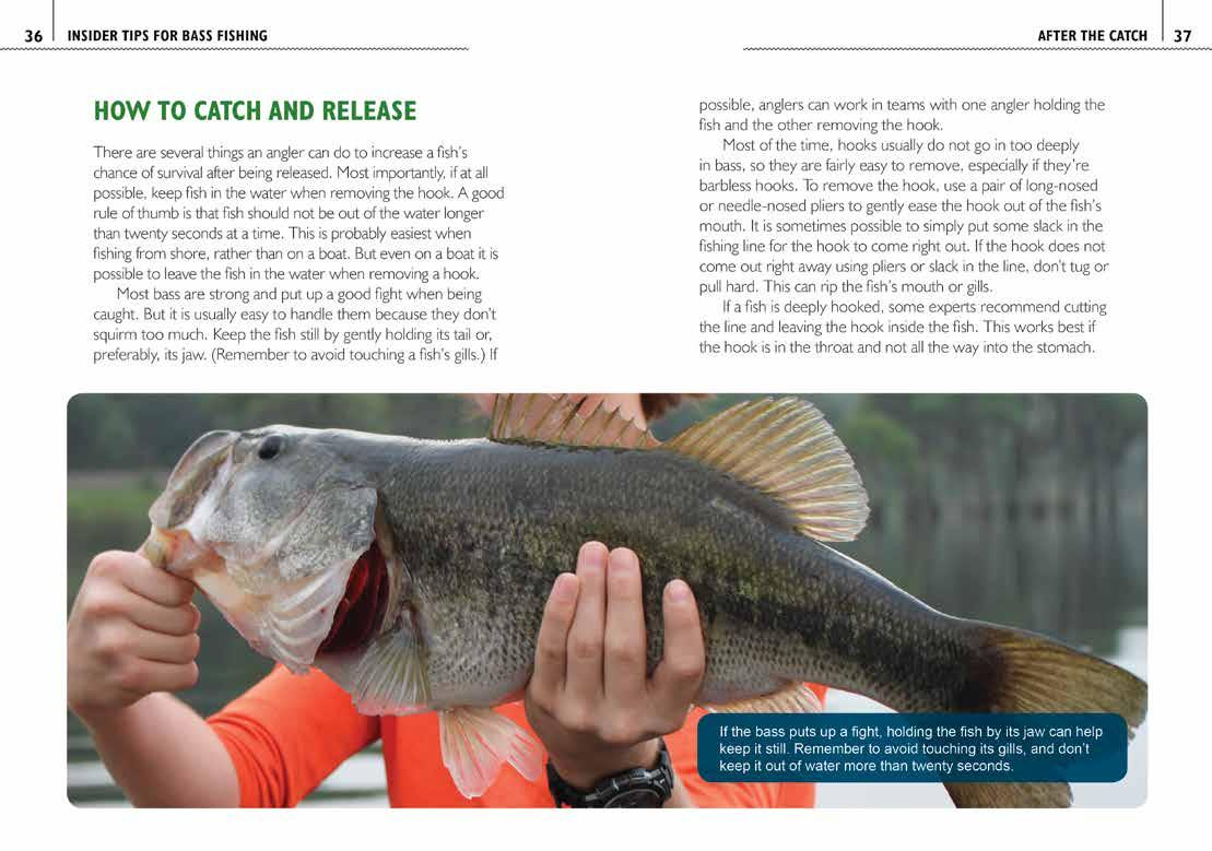 Page 26 of The Ultimate Guide to Fishing