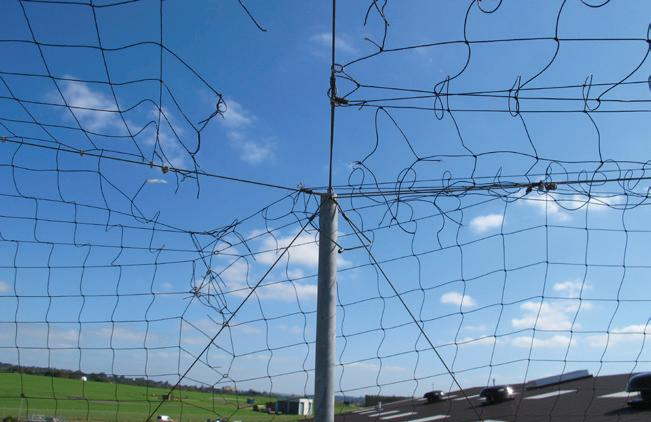 Page 66 of Maintenance contracts are vital where bird netting is used say experts