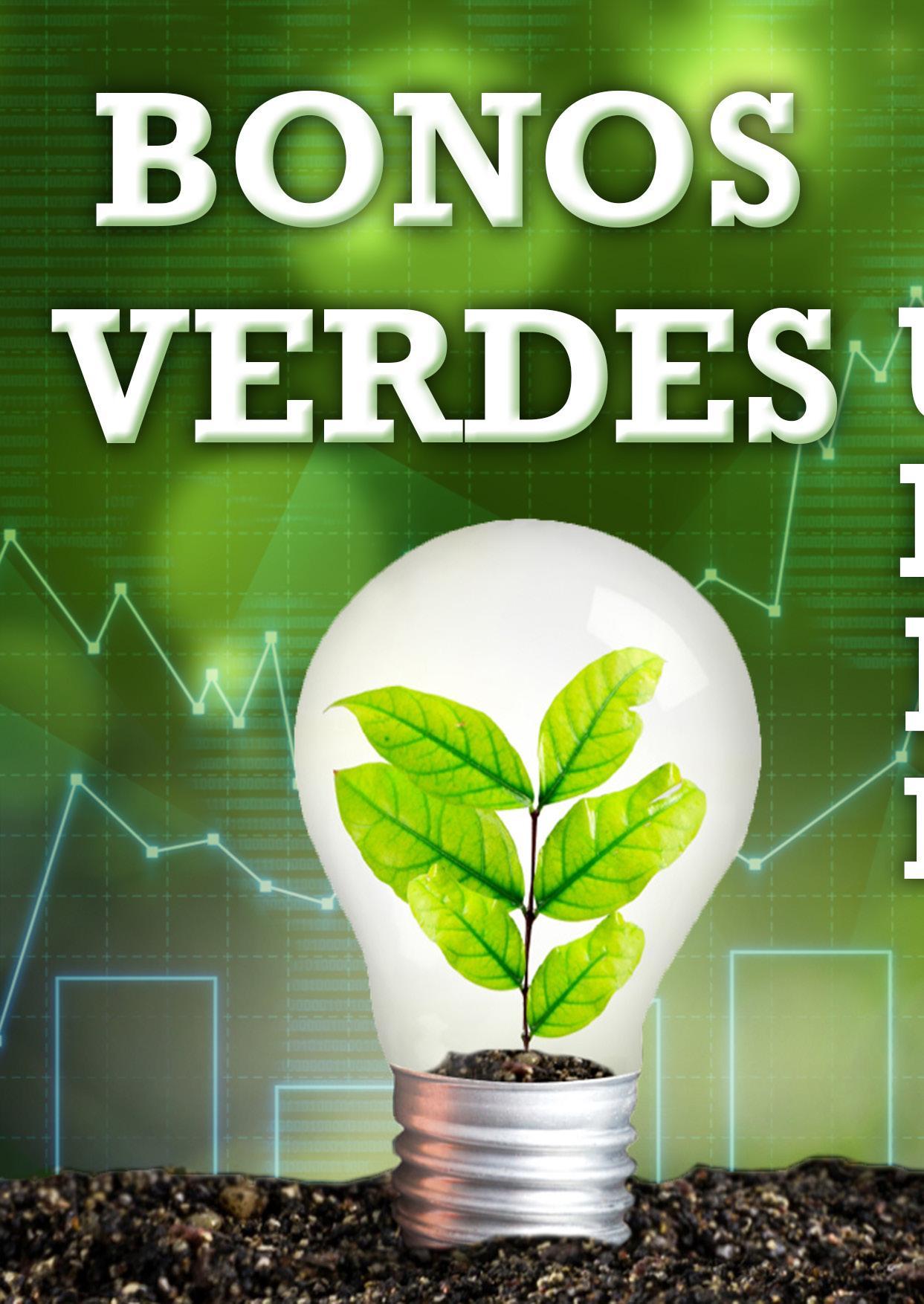 Page 50 of Bonos verdes, un mercado en expansión MARÍA FERNANDA HERNÁNDEZ