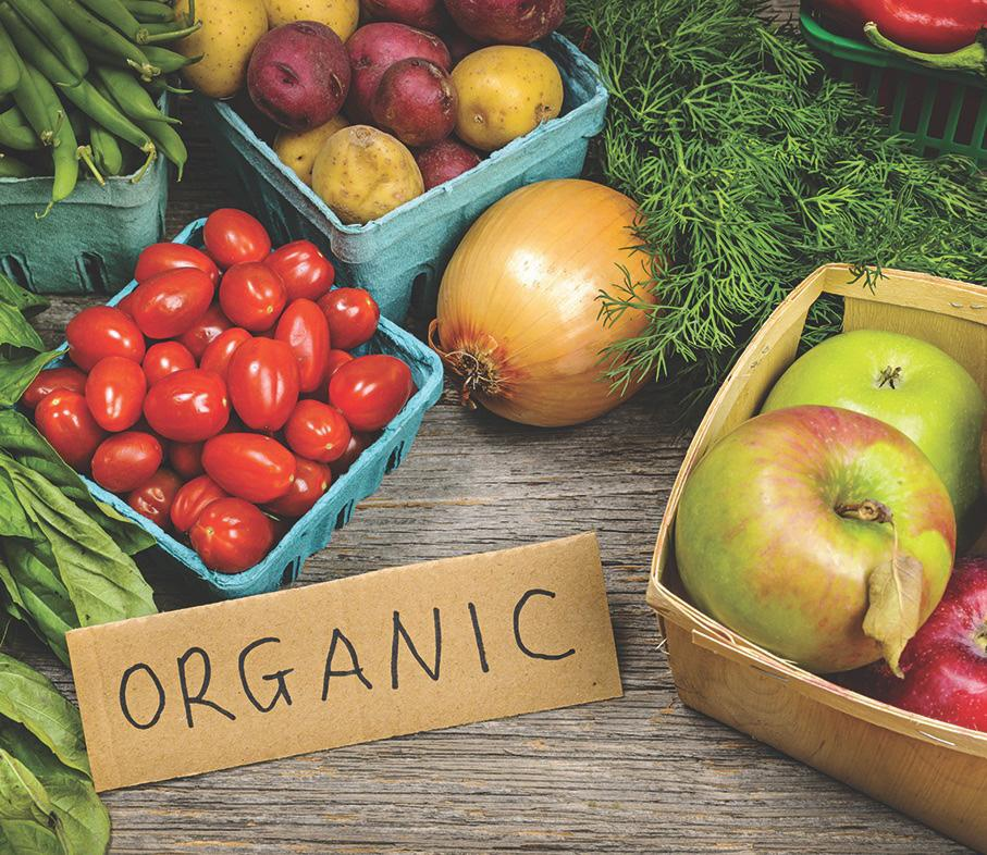 Page 3 of Organic food
