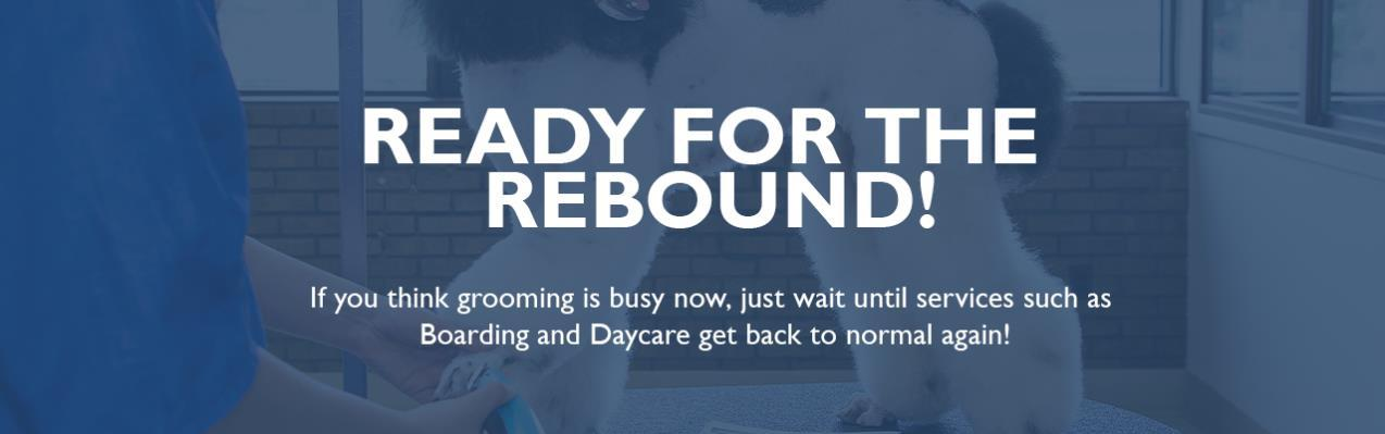 Page 17 of Ready for the Rebound 2021 Free Educational Resources