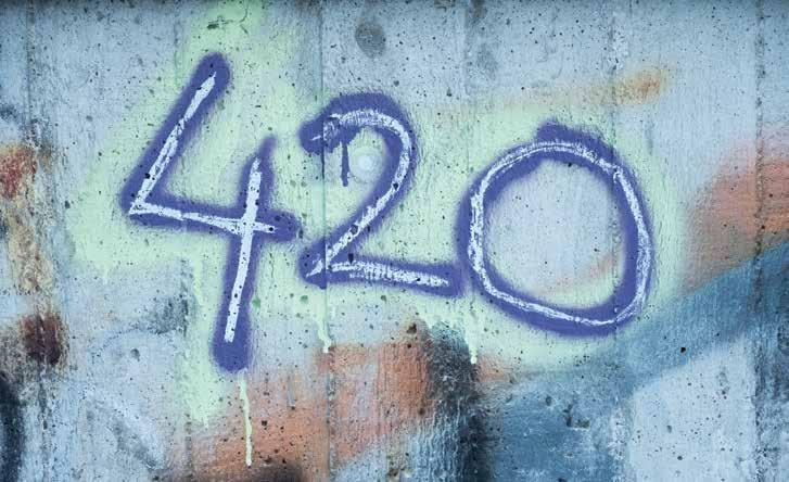 Page 24 of Do You Know Marijuana Slang?