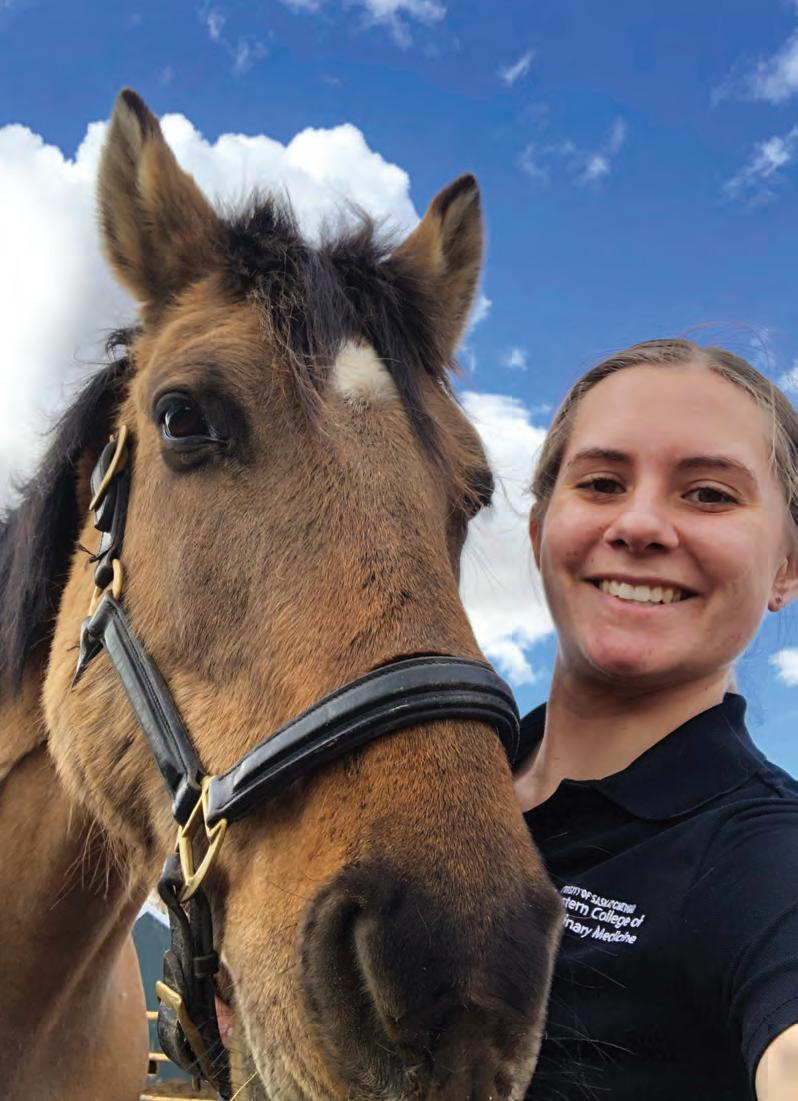 Page 3 of Swirski shines as horse health advocate