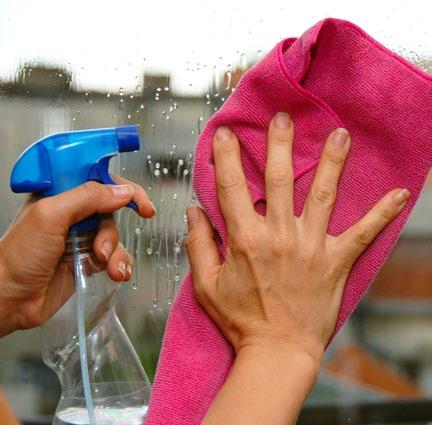 Page 14 of Vista Whole Home: Natural Alternatives to Cleaning Products that Hurt Women's Health