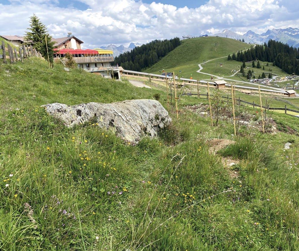 Page 15 of veranstaltungen Bergwochen Kölner haus und hexenseehütte