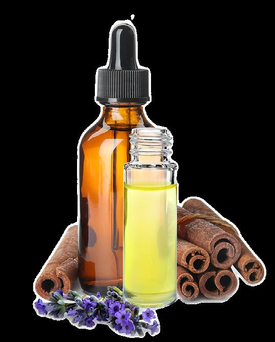 Page 12 of Essential Oils: Your Pet's Friend or Foe?