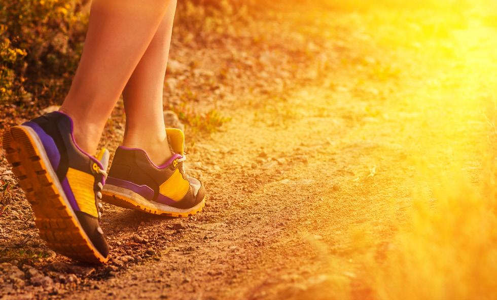 Page 22 of How to get the Most Out of Your Daily Walks