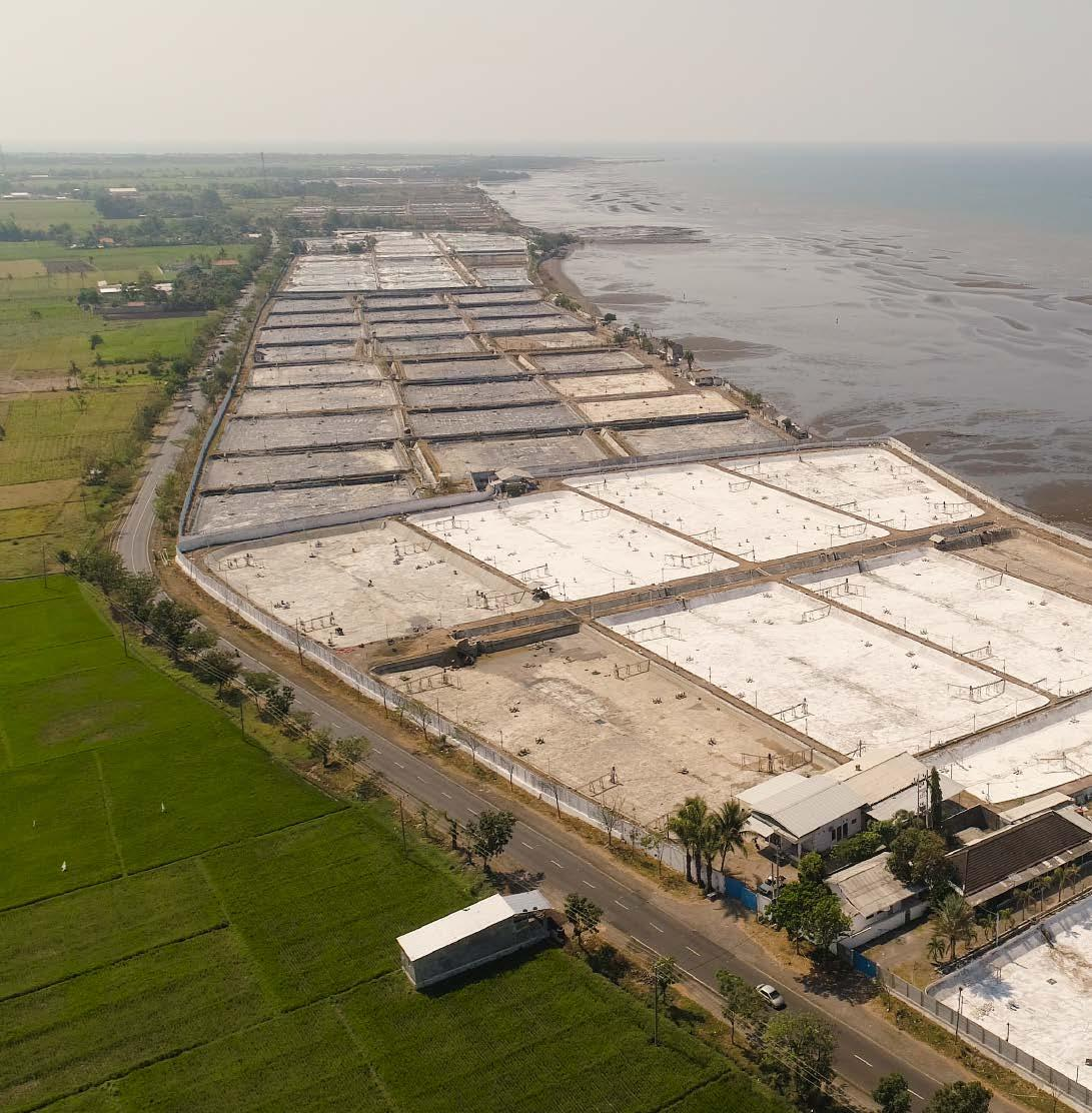 Page 34 of What is the biggest challenge facing shrimp farming today?