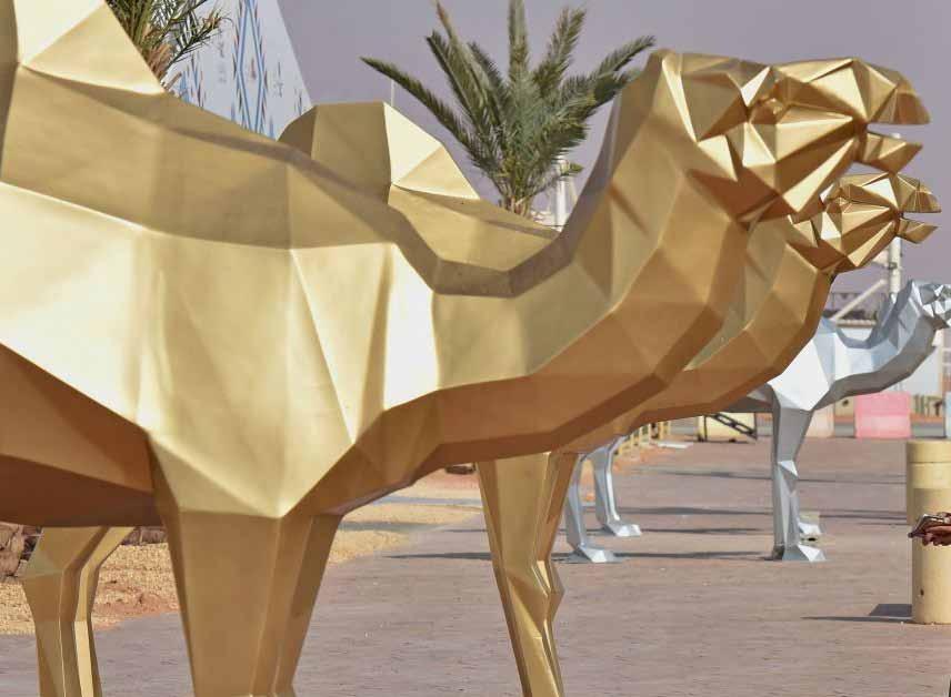 Page 46 of Saudi Arabia Explores its Dromedary Heritage Potential