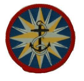 Page 7 of Progressive Badge Scheme