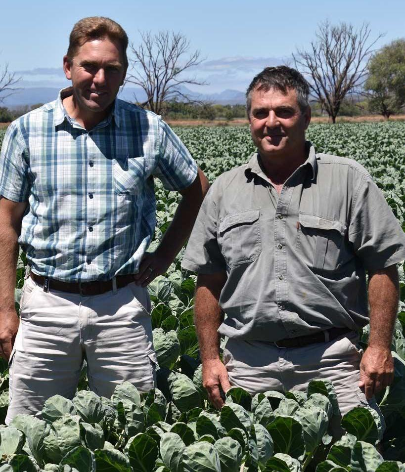 Page 10 of Groente verander Karoo en landboulandskap