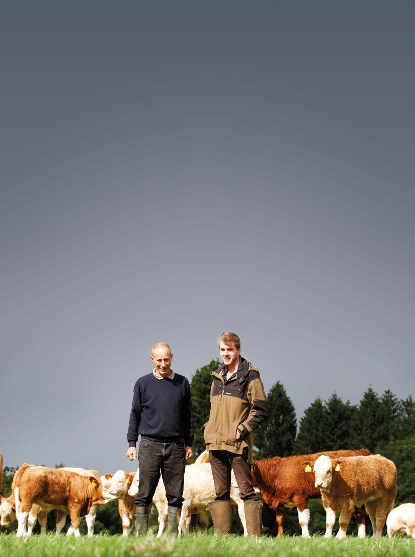 Page 30 of Bowley Herd Feature