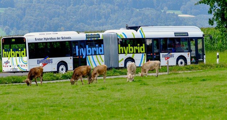 Page 36 of Programme d'encouragement pour les bus électriques et hybrides