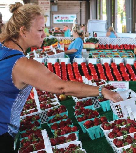 Page 12 of SUPPORTING FARMERS MARKETS Spring Is A Great Time to Get Outside And Get Fresh Food
