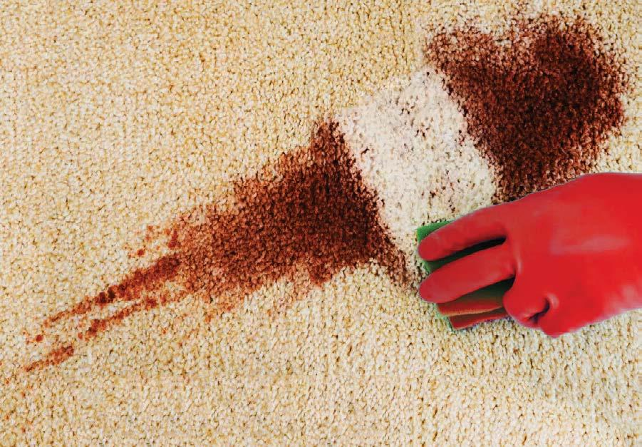Page 26 of Carpet Cleaner