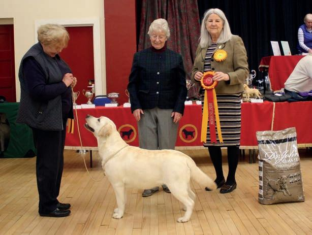 Page 22 of MCLRC January Open Show 2020 Report and Photos