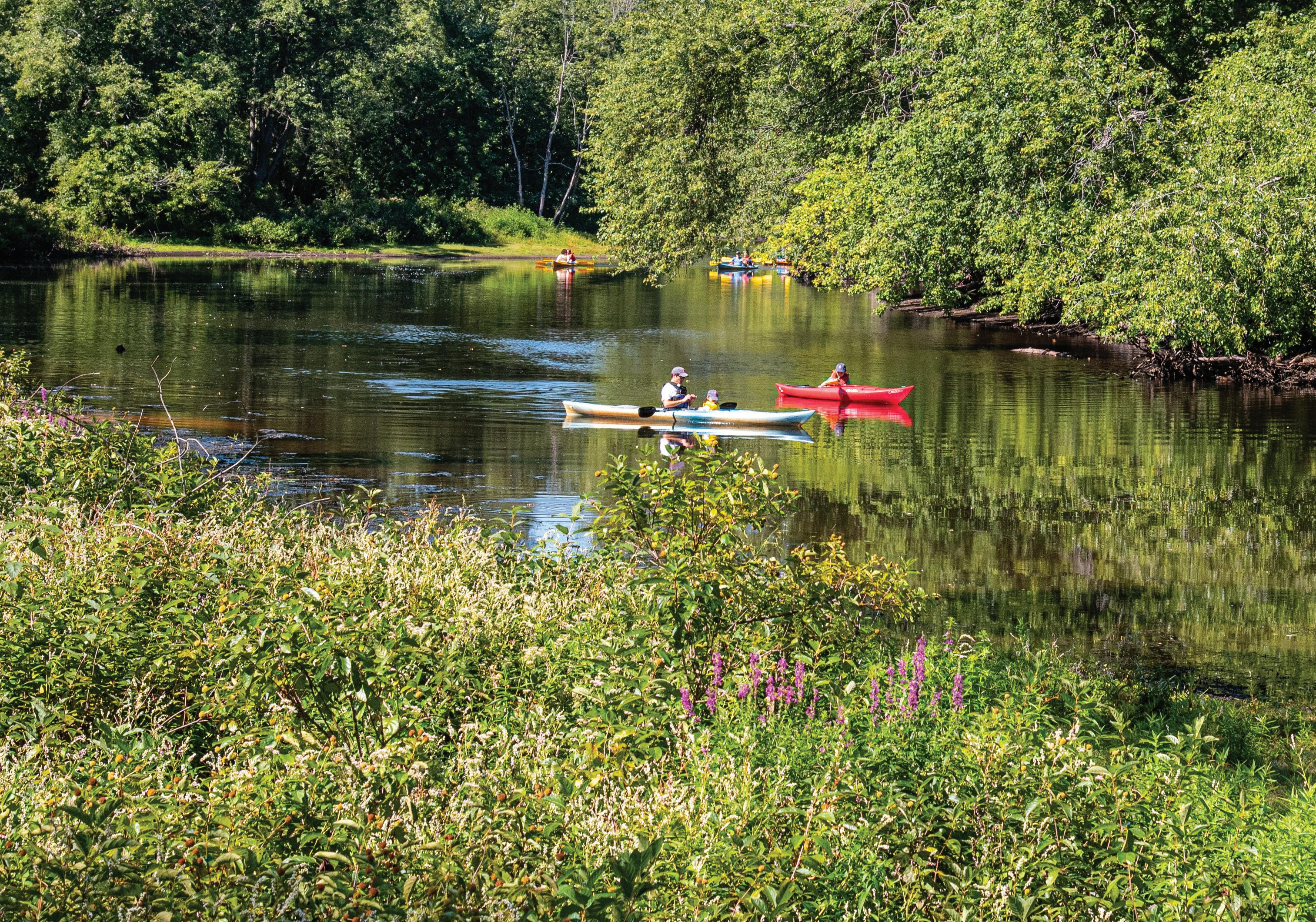 Page 12 of Top Things to See Do in Concord This Spring