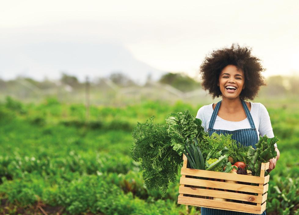 Page 6 of Über den Tellerrand hinaus Nachhaltige Ernährung hat viele Facetten