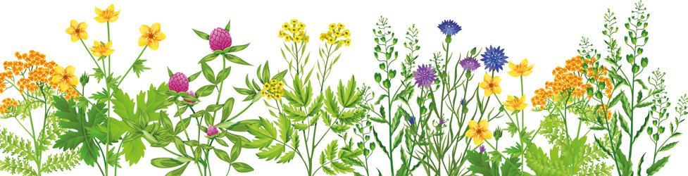 Page 44 of Mehr Natur im Garten