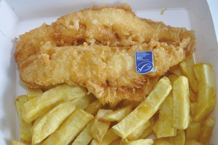 Page 42 of World's first MSC certified fish and chip shop celebrates 12 years of sustainable seafood